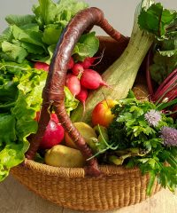 Votre panier de légumes bio sur Fleurance et proches alentours